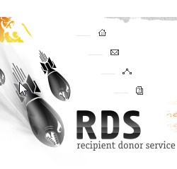 Как установить RDS bar для Google Chrom
