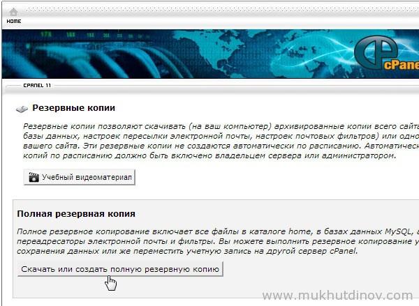 Как увидеть все копии сайта