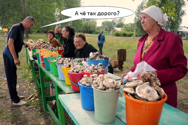 Сколько стоят грибы