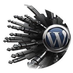 wordpress-plagins_0