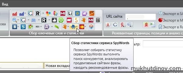 Кнопка SpyWords на панели инструментов KeyCollector