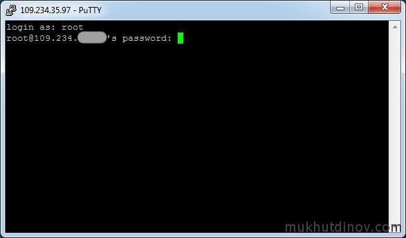 Вставляем пароль и жмем Enter. Обратите внимание, что введенный пароль не отображается