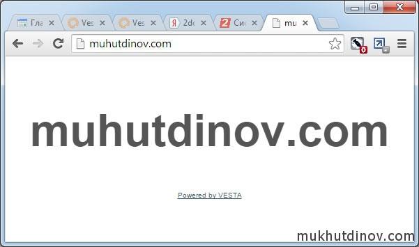 Сайт доступен в сети Интернет. Отображается главная страница, которая создается панелью управления автоматически в каталоге public_html