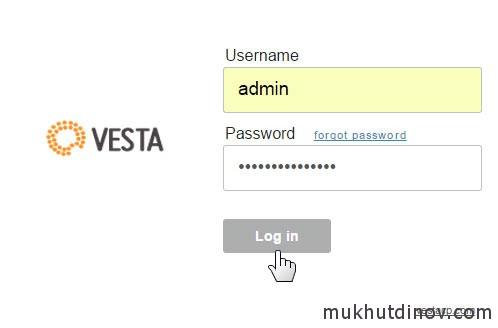 Вводим логин и пароль и жмем Log in