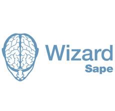 Покупка вечных ссылок в Wizard.Sape