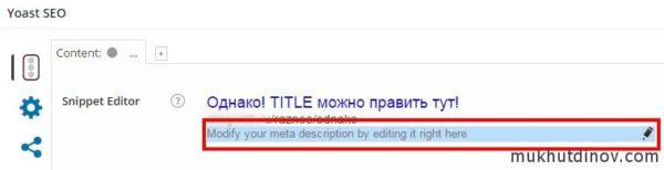 Красным выделено поле для редактирования description